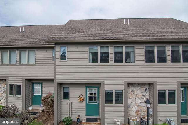 257 Marsh Hill Road #39, MC HENRY, MD 21541 (#MDGA2001076) :: The Sky Group