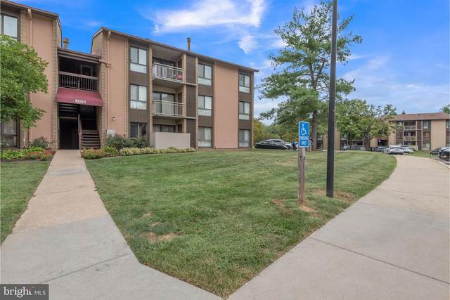 6081 Majors Lane 11M23, COLUMBIA, MD 21045 (#MDHW2005342) :: The Licata Group / EXP Realty