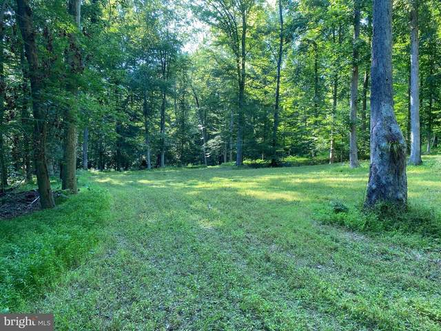 58.487 ACRES Wooddy Road, PORT TOBACCO, MD 20677 (#MDCH2004146) :: The Maryland Group of Long & Foster Real Estate