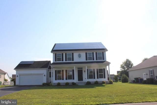 54 Trapper Lane, MAGNOLIA, DE 19962 (#DEKT2003336) :: Bright Home Group