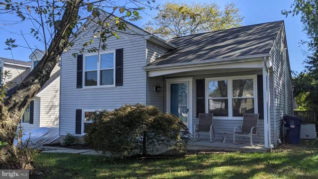 6391 Red Spruce Lane, SYKESVILLE, MD 21784 (#MDCR2002758) :: The MD Home Team