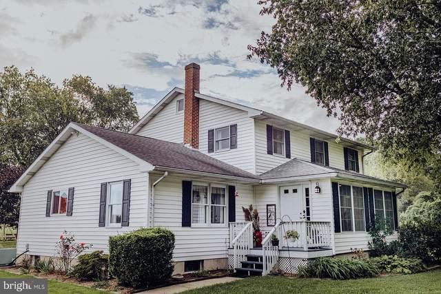 371 Blue Heron Road, DOVER, DE 19904 (#DEKT2003348) :: Bright Home Group