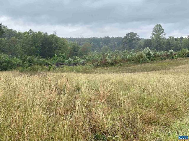 Sclaters Ford Rd, PALMYRA, VA 22963 (#622475) :: Pearson Smith Realty