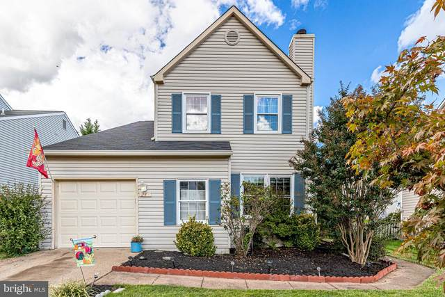 24 Mcpherson, STERLING, VA 20165 (#VALO2009272) :: The Gus Anthony Team