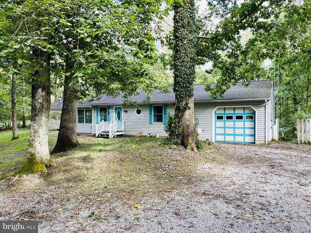 2496 Mccoys Ferry Road, HEDGESVILLE, WV 25427 (#WVBE2002990) :: The Schiff Home Team