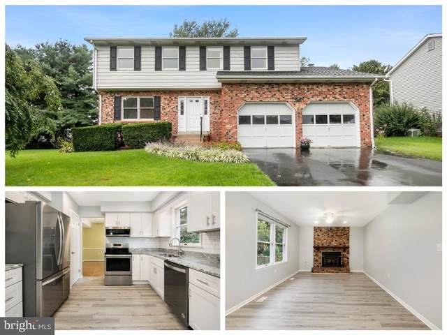 8210 Winter Snow Court, FREDERICK, MD 21702 (#MDFR2006522) :: Murray & Co. Real Estate