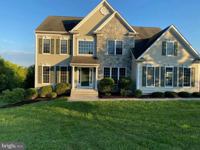 16358 Cattail River Drive, WOODBINE, MD 21797 (#MDHW2005450) :: The Mike Coleman Team