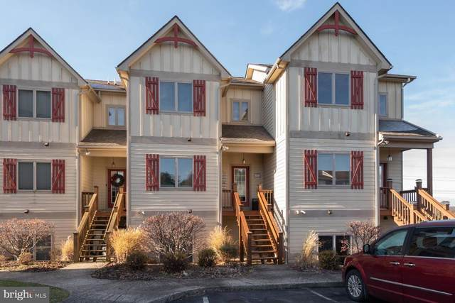 267 Mosser Road #11, MC HENRY, MD 21541 (#MDGA2001090) :: The Sky Group