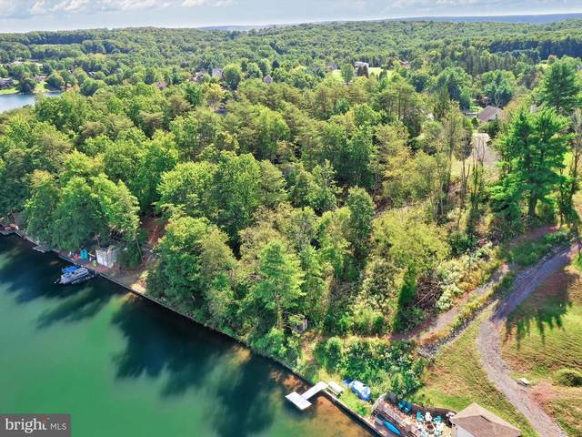 1527 Pinto Cove, AUBURN, PA 17922 (#PASK2001638) :: Linda Dale Real Estate Experts