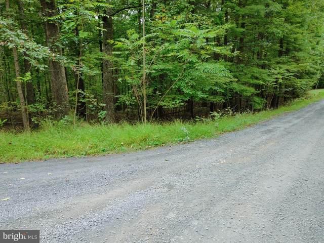 38 Shadow Mountain Lane, NEW MARKET, VA 22844 (#VASH2001080) :: Nesbitt Realty