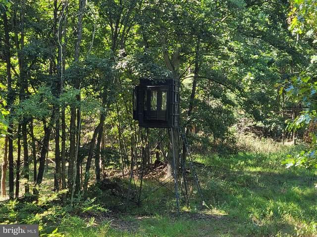 243 Black Oak Drive, MOOREFIELD, WV 26836 (#WVHD2000324) :: Murray & Co. Real Estate
