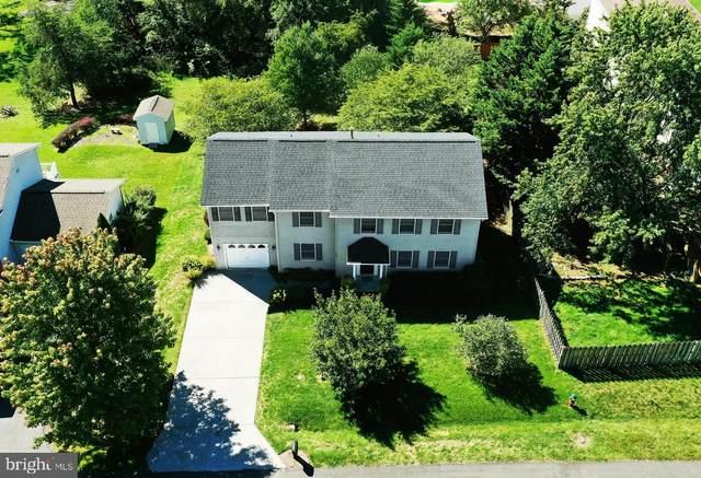 102 Primrose Place, WINCHESTER, VA 22602 (#VAFV2002090) :: Gail Nyman Group