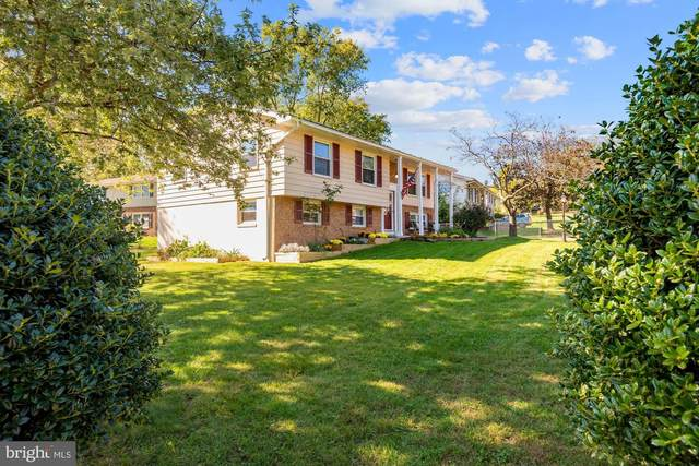 1212 E Lee Road, STERLING, VA 20164 (#VALO2009492) :: Charis Realty Group