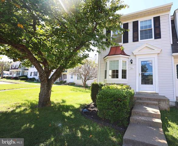 20 Quincy Court, STERLING, VA 20165 (#VALO2009494) :: The Gus Anthony Team