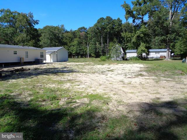 56 East Whitetail Drive, SELBYVILLE, DE 19975 (#DESU2007296) :: The Lux Living Group
