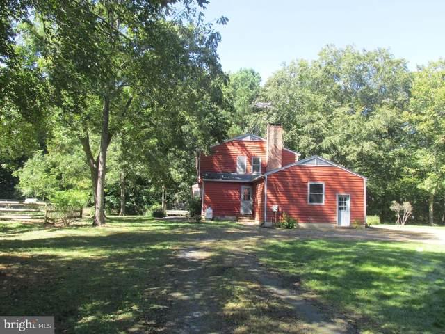 4162 North Island Lane, TRAPPE, MD 21673 (MLS #MDTA2000992) :: Maryland Shore Living | Benson & Mangold Real Estate