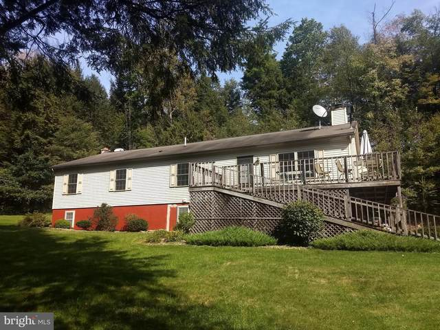 76 Old Store Rd, POTTERSDALE, PA 16871 (#PACD2000010) :: Colgan Real Estate