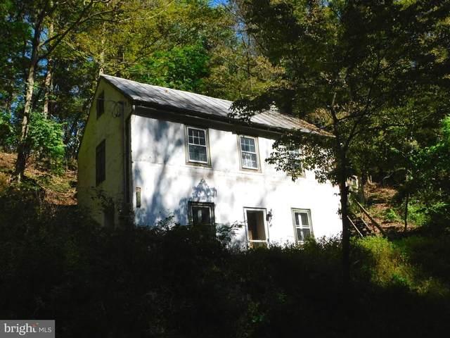 376 Levengood Road, DOUGLASSVILLE, PA 19518 (#PABK2005214) :: The Pierre Group