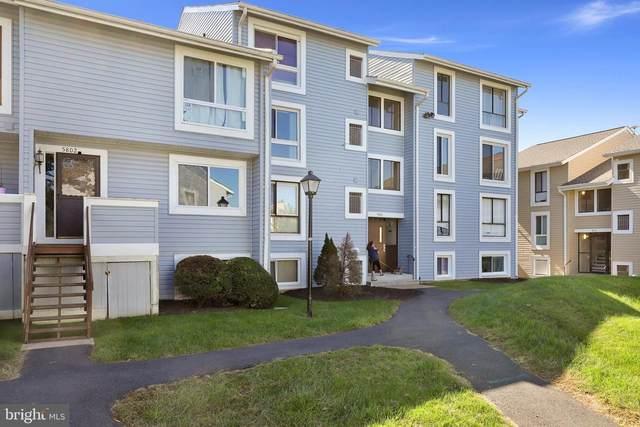 5804 Village Green Drive E, ALEXANDRIA, VA 22309 (#VAFX2024882) :: RE/MAX Cornerstone Realty