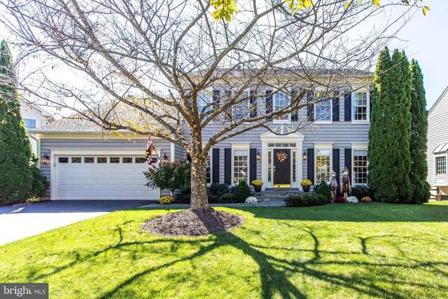 13510 Sanderling Place, GERMANTOWN, MD 20874 (#MDMC2018512) :: The Gus Anthony Team