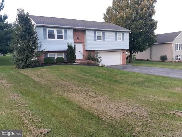 508 Pleasant Valley Road, DENVER, PA 17517 (#PALA2006190) :: The Joy Daniels Real Estate Group