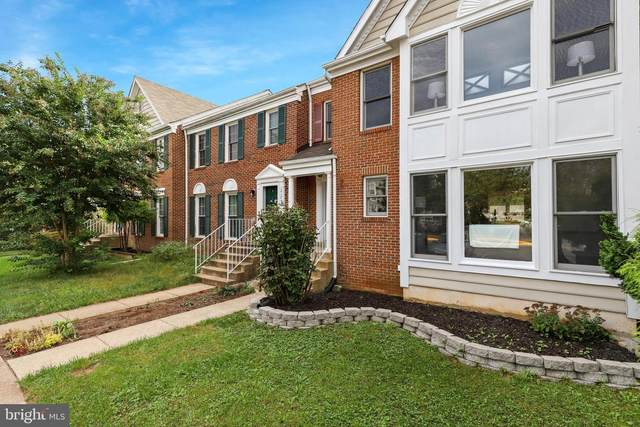 21793 Canfield Terrace, STERLING, VA 20164 (#VALO2009770) :: The Sky Group