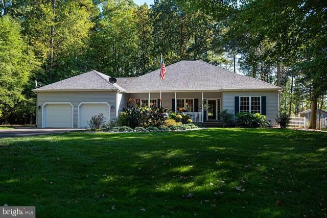 25 Manor Drive, DAGSBORO, DE 19939 (#DESU2007518) :: Linda Dale Real Estate Experts