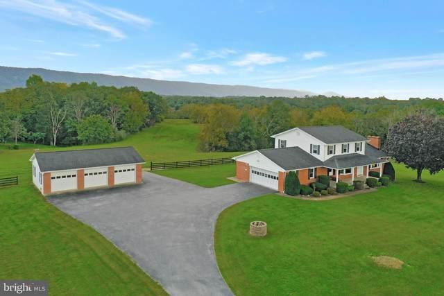 50 Posey Hollow Lane, STRASBURG, VA 22657 (#VASH2001154) :: Berkshire Hathaway HomeServices McNelis Group Properties