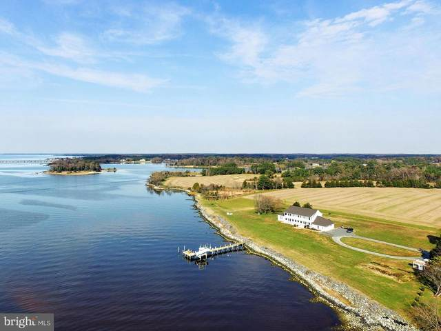 1292 Chancellor Point Road, TRAPPE, MD 21673 (MLS #MDTA2001034) :: Maryland Shore Living | Benson & Mangold Real Estate