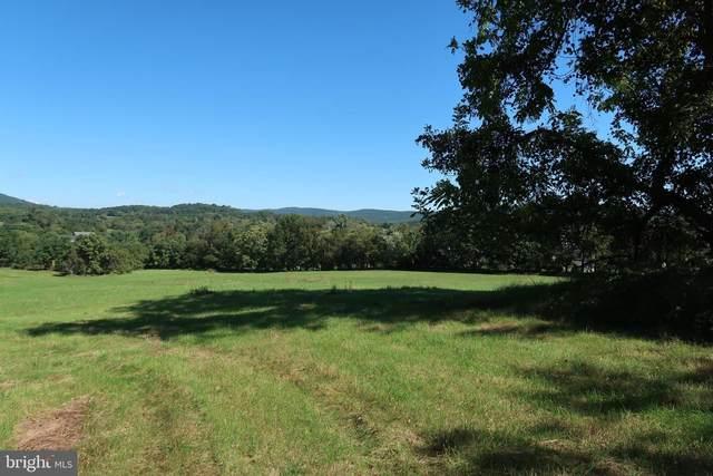 Lot 1F2A Tangle Twig, PURCELLVILLE, VA 20132 (#VALO2009940) :: FORWARD LLC