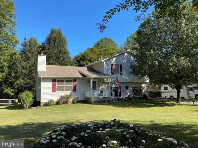 1229 Overton Drive, MINERAL, VA 23117 (#VALA2000670) :: Dart Homes