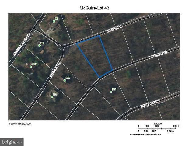 Lot 43 Locust Lane, MOUNT JACKSON, VA 22842 (#VASH2001164) :: Nesbitt Realty