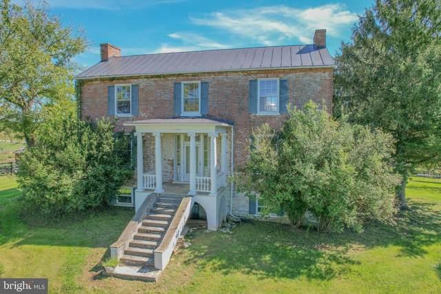 3838 Shepherds Mill Road N, BERRYVILLE, VA 22611 (MLS #VACL2000344) :: Maryland Shore Living | Benson & Mangold Real Estate