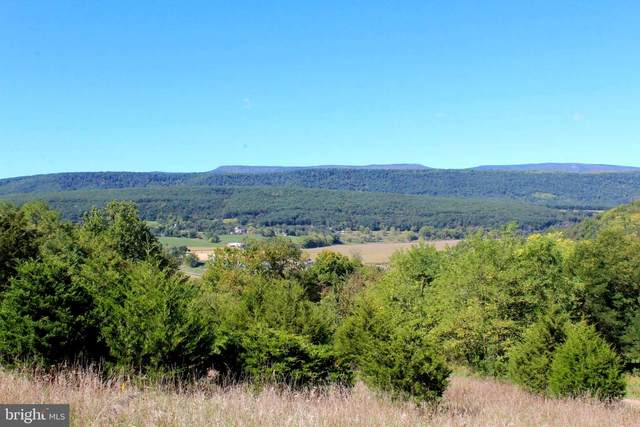 24 +/- acres off Saratoga Drive, UPPER TRACT, WV 26866 (#WVPT2000064) :: Arlington Realty, Inc.