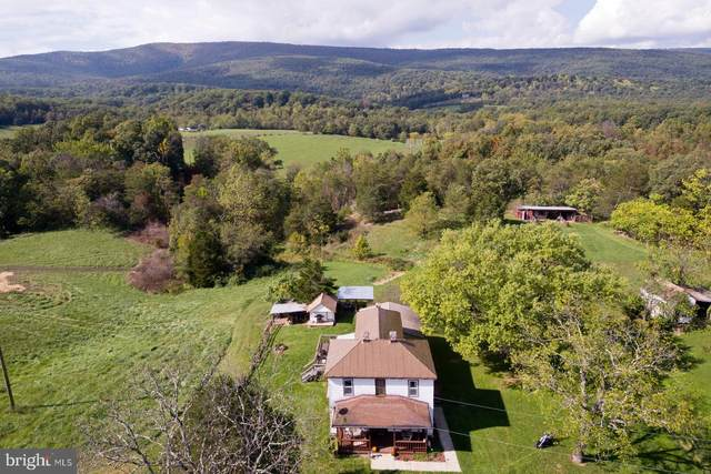 2768 Gravel Springs Road, STAR TANNERY, VA 22654 (#VAFV2002276) :: ExecuHome Realty