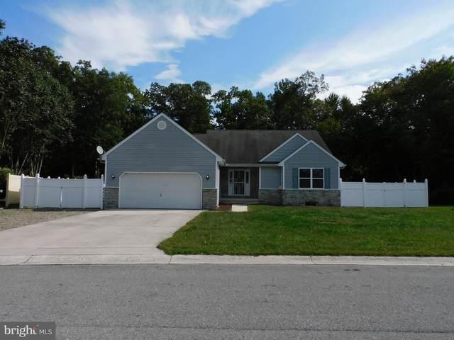 246 Greenwich Drive, DOVER, DE 19901 (#DEKT2003716) :: Your Home Realty