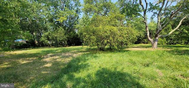 6060 Grimes Avenue, TILGHMAN, MD 21671 (MLS #MDTA2001050) :: Maryland Shore Living | Benson & Mangold Real Estate