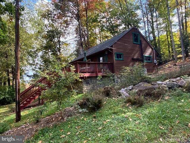 75 Gila Trail, OAKLAND, MD 21550 (#MDGA2001182) :: The Matt Lenza Real Estate Team