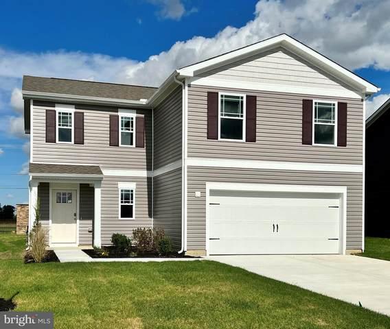 11731 Robyn Lane, PRINCESS ANNE, MD 21853 (#MDSO2000820) :: Jennifer Mack Properties