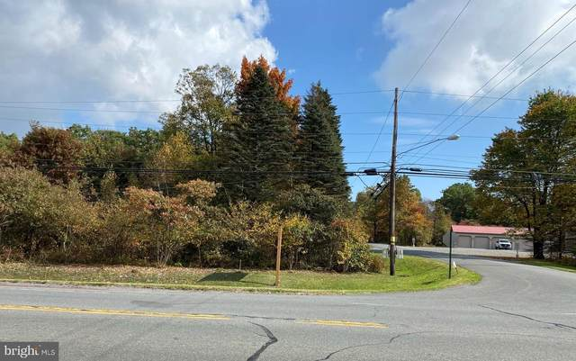 Pa State Rte 903, JIM THORPE, PA 18229 (#PACC2000444) :: Linda Dale Real Estate Experts