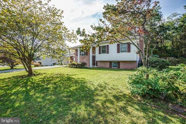 5 Weil Drive, THURMONT, MD 21788 (#MDFR2007142) :: ExecuHome Realty