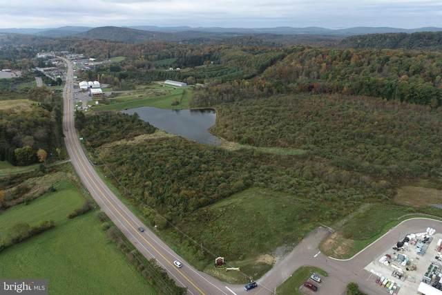 13209 Garrett Highway Lot#2, OAKLAND, MD 21550 (#MDGA2001184) :: The Matt Lenza Real Estate Team