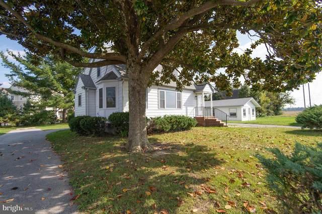 4405 Osborne Road, HURLOCK, MD 21643 (#MDDO2000822) :: Monarch Properties