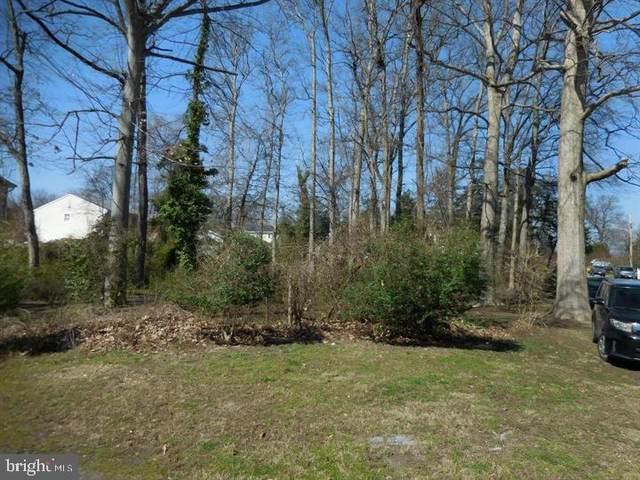Potomac Road, EDGEWATER, MD 21037 (#MDAA2012200) :: Debbie Jett