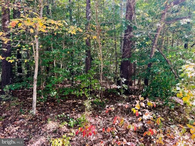 Paradise Lane, RUTHER GLEN, VA 22546 (#VACV2000616) :: Debbie Jett