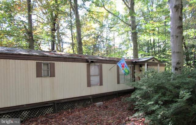 110 Slate Rock Road, BIGLERVILLE, PA 17307 (#PAAD2001684) :: The Joy Daniels Real Estate Group