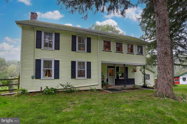 2954 Pinch Road, MANHEIM, PA 17545 (#PALA2006596) :: The Heather Neidlinger Team With Berkshire Hathaway HomeServices Homesale Realty