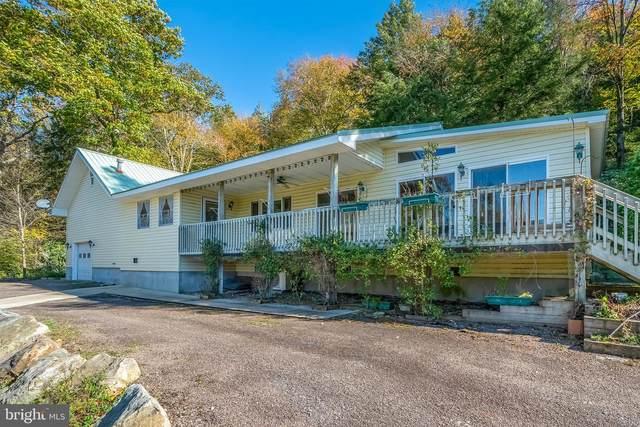 276 Falls Way, OAKLAND, MD 21550 (#MDGA2001200) :: Berkshire Hathaway HomeServices McNelis Group Properties