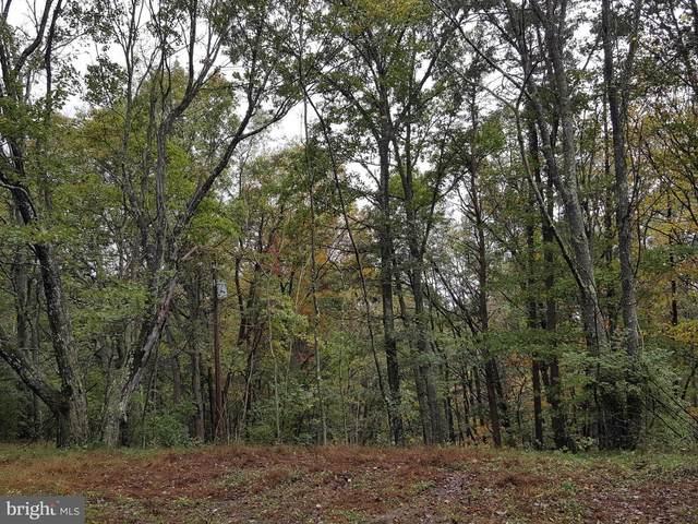 25305 Old Williams Road NE, FLINTSTONE, MD 21530 (#MDAL2001122) :: Debbie Jett