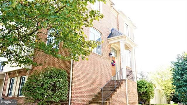 24923 Pinebrook Road, CHANTILLY, VA 20152 (#VALO2010312) :: A Magnolia Home Team